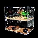 Vinnykud Caja de Alimentación de Insectos Recipiente para Animales pequeños Reptil acrílico Transparente arañas,escarabajos,lagartijas,Escorpiones,ciempiés y Ranas cornudas geco Prevenir Huir diseño