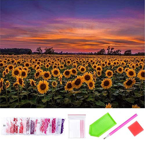 YFWUQI 5D Diamond Painting Pictures, DIY 5D Diamond Painting Full Drill Set for Adults Children Full Drill Round Rhinestone Embroidery 5D Diamond Painting Kits for Home Wall Decor (40 cm x 30 cm)
