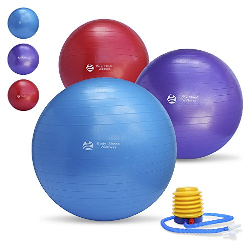 Body Shape Wellness - Premium Exercise Gym Quality Ball with Pump-55cm/65cm/75cm Well Tested up to 2000lbs Aniburts Stability Ball