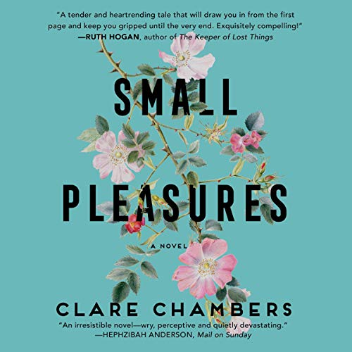 Couverture de Small Pleasures