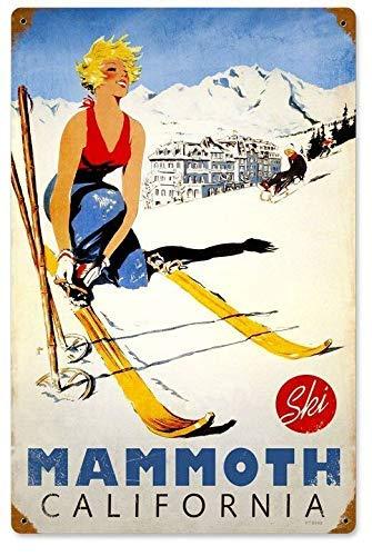 5562 Tabla de metal de aluminio para snowboard, deportes, patio, nieve, montaña, competición, parque nacional, fiesta al aire libre, pintura de hierro, placa de metal de 8 x 12 pulgadas