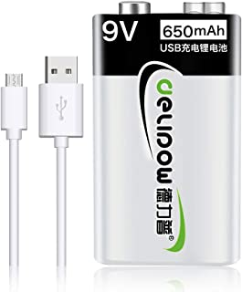 Delipow USB Rechargeable Batteries 9V, 650mAh Li-ion 1.5h Quick Charge Battery Cell, Recyclable Recharge Battery with Micro USB Charge
