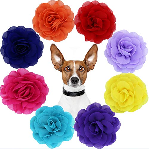 Runs Dog Flowers Collar Pet Charms Flower Collars Accessories for Cat Puppy Collars Bowtie Grooming Decoration Pack of 8