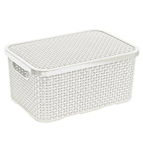 BranQ - Contenitore in rattan con coperchio, 7 l, colore: Bianco