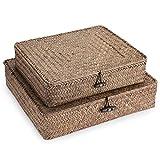 Sumnacon - 2 cesti portaoggetti piatti, con coperchio, per scaffali, scatola portaoggetti, in rattan (caffè)