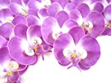 (100) Purple Phalaenopsis Orchid Silk Flower Heads - 3.75' - Artificial Flowers Heads Fabric Floral Supplies Wholesale Lot for Wedding Flowers Accessories Make Bridal Hair Clips Headbands Dress