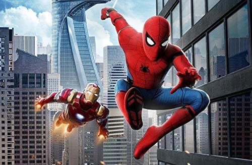 SHENQI-Pintura por Numeros Adultos- Póster Spiderman Y Iron Man -Kit De Pintura Al Óleo para Niños, Lienzo Preimpreso De 40*60Cm con Pinceles Y Pigmento Acrílico