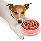 2PET Slow Feed Dog Bowl Slowly Bowly Fun Interactive Dog Dish for Fast...