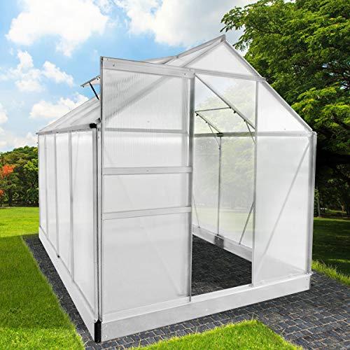 BRAST Gewächshaus Aluminium mit Stahlfundament 7,6 m³ 250x190x195cm 6mm Platten 2 Fenster Treibhaus Glashaus Alu rostfrei