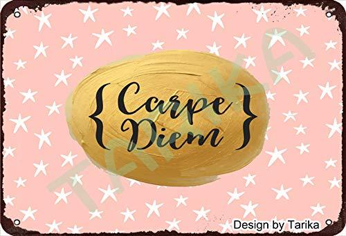 Carpe Diem - Cartel decorativo de hierro de 20 x 30 cm, diseño retro, para el hogar, cocina, baño, granja, jardín, garaje, citas inspiradoras, decoración de pared