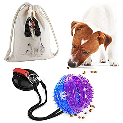 Dog Rope Toy with Treat Ball, Suction Cup Tug of War Dog Toy, Interective Self-Playing Chew Toy for Pulling, Chasing, Chewing, Training, Suit for Small to Large Dog