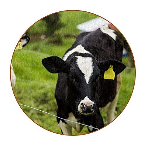 Bennigiry Juego de 6 posavasos redondos de becerro y vacas lecheras jóvenes para tazas de bebidas manteles individuales