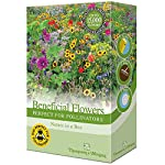Mixed Flower Garden Plant Seed Grow Your Own Annual & Perennials Such As Foxgloves, Mallow & Wallflowers Attracting Pollinators 1 x 15g Pack by Thompson & Morgan