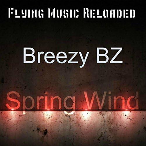 Breezy BZ
