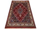 WAWA TEPPICHE Alfombra oriental Bidjar tejida a mano, 100% lana, 200 x 300 cm, color rojo y crema