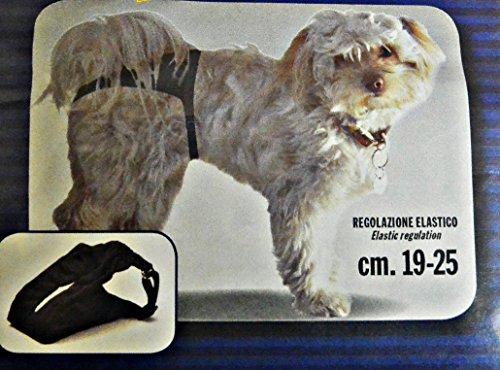 Schutzhöschen , läufige Hundin , 5 Größen , Hygienehöschen (19 - 25 cm)
