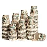 HAPPYFOOD Kit Eco 100 Bicchierini di carta per Caffè biodegradabili 110 ml + 100 Palette in legno monouso imbustate singolarmente - Per Caffè Espresso e Ginseng - spedito in Packaging protettivo