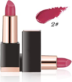 12 Colors High saturation Lipsticks with Deep Moisturizing and Non-Sticky/Long Lasting Effect Lip Gloss Makeup Cosmetics 1.6oz(02)