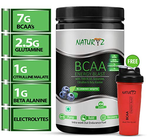 Naturyz Instantized Bcaa Energy Blast Blueberry Mojito Flav