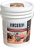 Encore Wood Deck Coating