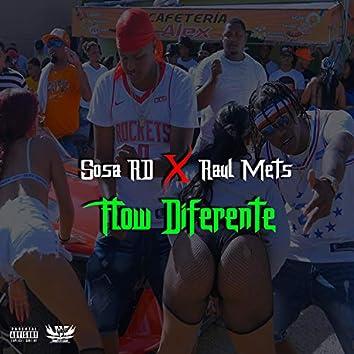 Flow Diferente (feat. Raul Mets)