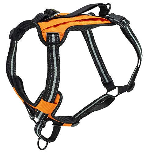 PetSafe Walk-Along Outdoor Dog Harness, No-Pull Solution, Water-Resistant, Zippered Pouch for Storage, Built-in Car Restraint, Large