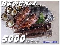 鮮度が命!!高級鮮魚セット5000