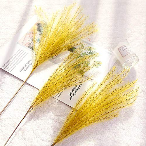 10 stks/partij natuurlijke gedroogde bloem riet bloemboeket bruiloft woondecoratie hoge kwaliteit phragmite bies tak foto props, geel