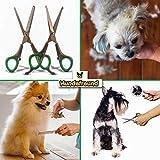 Hundescheren-Set mit Effilierschere zur Fellpflege für alle Hunde | Scheren aus Edelstahl mit abgerundeter Spitze - 7