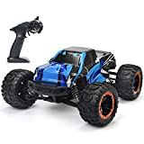 NUOKE RC Car Remote Control Truck 1:16 Scale 36km/h High Speed 4WD 2.4Ghz Waterproof Offroad Gift for Boys Car for Kids and Adults