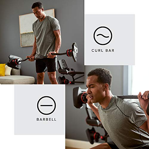 Product Image 1: Bowflex SelectTech ST2080 Curl Bar, Black