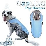 Lesgos Kühlweste für Hunde