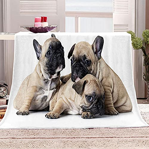 LHNGOD Flannel Fleece Throw Blankets Three Cute French Bulldogs Weighted Blanket King Size for Adults Warm Cozy Kids Ultra Soft Blanket for Bedding Couch Bed Living Room Sofa Decor 59x79inch