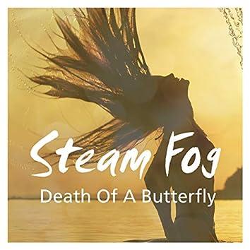 Death of a Butterfly (Original Mix)