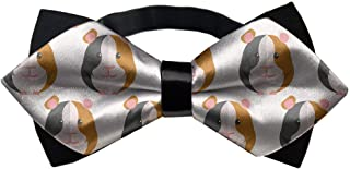 guinea pig bow tie