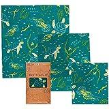 Conjunto de 3 bee's wrap em vários tamanhos Ocean - Verde