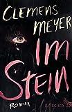 """Rezensions-Rundschau zu Meyers """"Im Stein"""""""