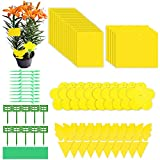 Evance 80 Pack Yellow Sticky Traps, Dual-Sided Fly Paper Stickers for Flying Plant Insect-Included 20pcs...