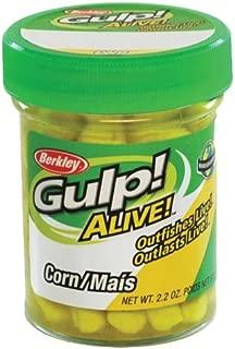 Best berkley gulp alive corn Reviews