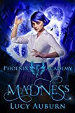 Phoenix Academy: Madness: A Reverse Harem Paranormal Romance (Blue Phoenix Book 1) (English Edition)
