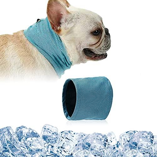 D&D DD Imbracatura per Puppies