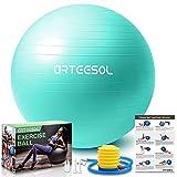 arteesol Ballon de Gym, Ballon...
