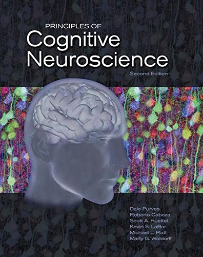 Download Principles of Cognitive Neuroscience 0878935738