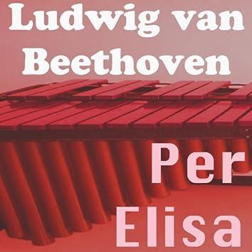 Beethoven: Per Elisa, WoO 59 (Marimba nella natura Version)