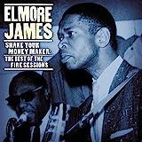 Elmore James the King of the Slide Guitar