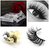 Vanlov 3D Mink False eyelash Reusable 100% hand made fake eyelashes for Make-up 1 Pair Package (1-Pack)