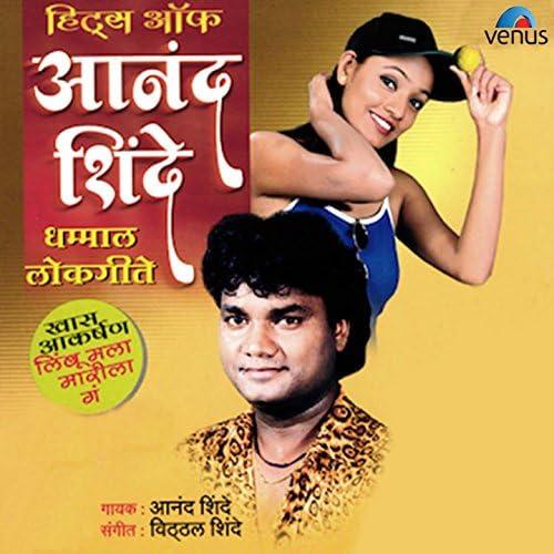 Anand Shinde