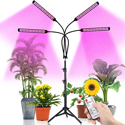 LED Grow Light with Stand, TACAHE 192 Lamp Beads 100W Red Blue Spectrum Grow Lights for Indoor Plants with Remote Control, Auto ON/Off 4/8/12H Timer, 10 Dimmable Level, Adjustable Gooseneck
