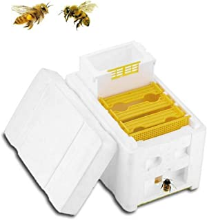 Bee Hive Box, Hive Box Harvest Beehive Pollination Beekeeping For Bee Mating Copulation for The auto Honey Frames Harvest Key for Beekeepers (White)