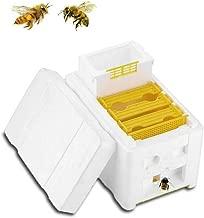 Best queen bee packing Reviews